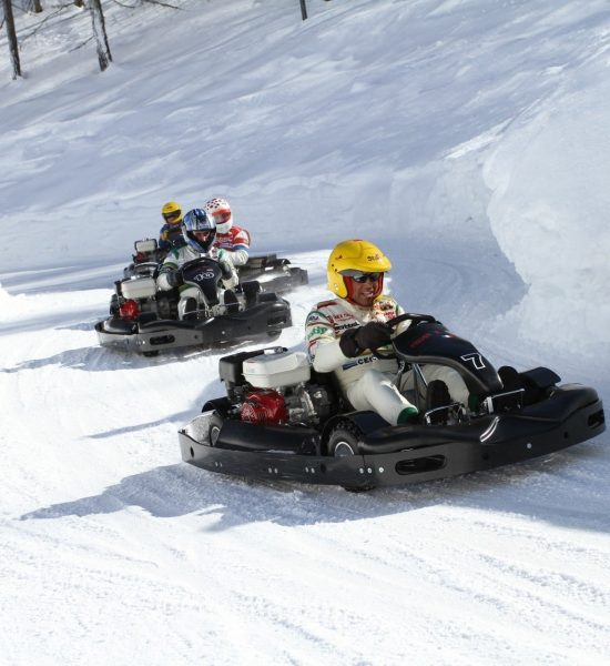 ice_karting-italy